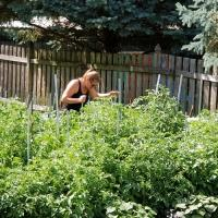 Backyard Vegetable and Fruit Growers